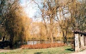 Park Oruński 1