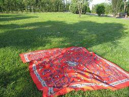 Tweetup na zielonej trawie
