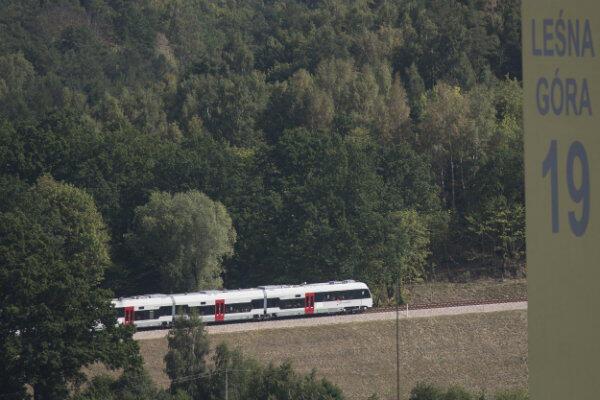 Trasa Pomorskiej Kolei Metropolitalnej biegnie m.in. przez las okalający Piecki-Migowo.