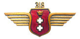 Jedna z pamiątkowych odznak 318 Dywizjonu, wykonana już po wojnie.