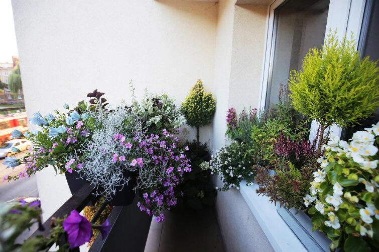 Zwycięski balkon na Siedlcach - inne ujęcie