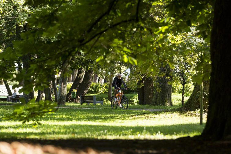 Miejscowe plany zagospodarowania terenu dotyczyły m.in. obszaru sąsiadującego z Parkiem Jelitkowskim
