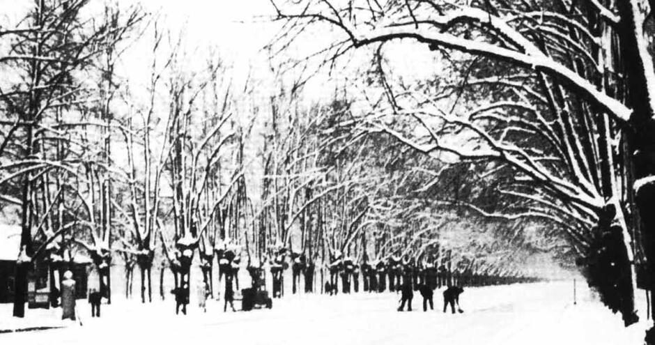 Odśnieżanie Wielkiej Alei po obfitych opadach śniegu; 1924