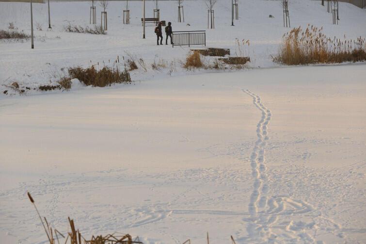 Uwaga na zamarznięte zbiorniki wody w mieście! Sprawdziliśmy: rozsądne dzieci nie wchodzą na lód