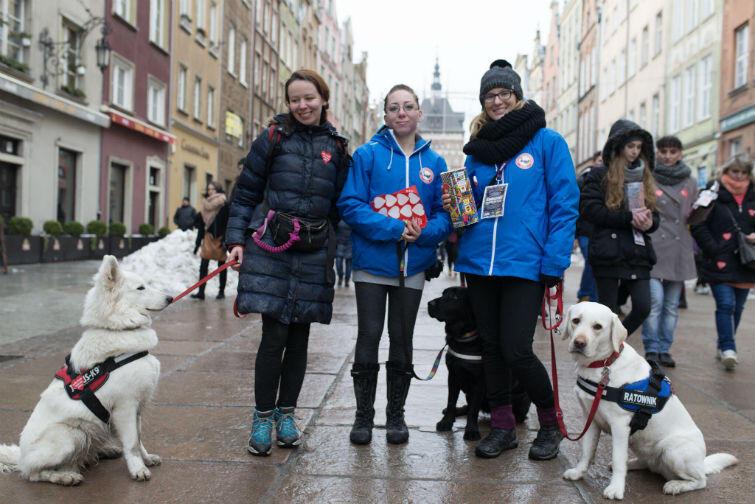 W zbiórce na WOŚP uczestniczą także psy ratownicy