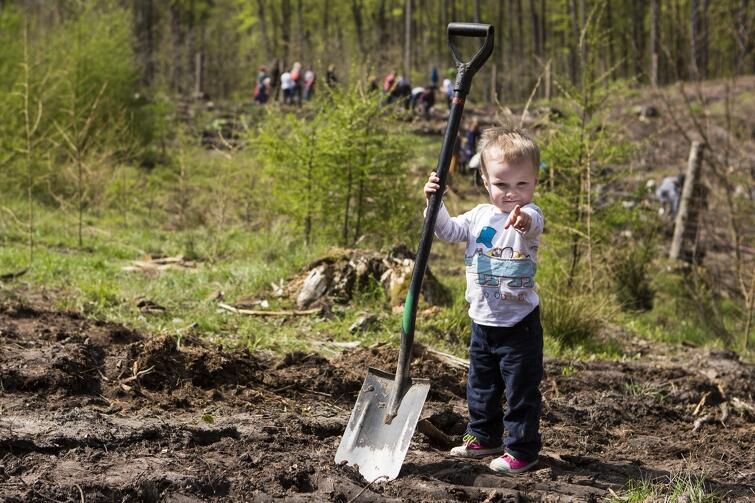 W sobotę, 6 maja, szpadle poszły w ruch. Mali i duzi mieszkańcy Gdańska brali udział we wspólnym sadzeniu lasu. W pobliżu Brętowa przy Lipnickiej Drodze posadzono prawie 4 tys. drzew. Po dobrze wykonanej robocie był gorący posiłek i zabawy dla dzieci, każdy z uczestników otrzymał też imienny certyfikat poświadczający fakt posadzenia drzewa