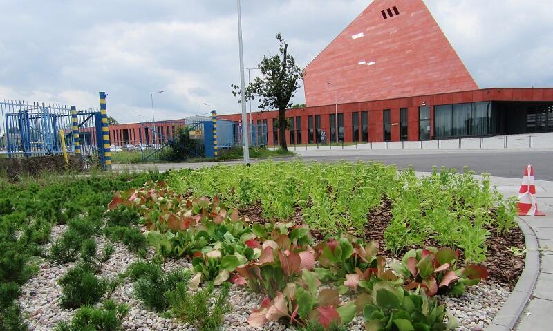 W tle nowej aranżacji Muzeum II Wojny Światowej w Gdańsku