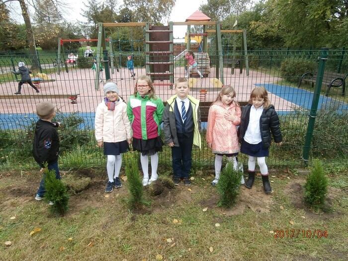 sadzenie roślin przez klasy pierwsze