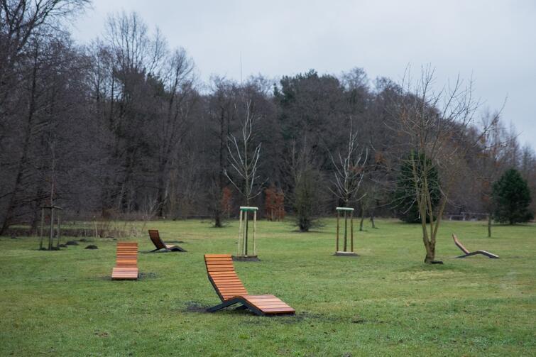 Drewniane leżaki znajdziecie na parkowej łące, w sąsiedztwie placów zabaw i siłowni pod chmurką