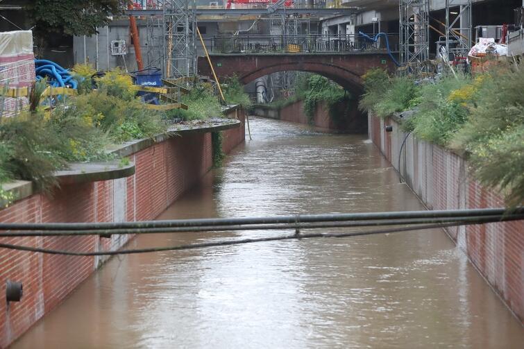 Sporny fragment Kanału Raduni od strony północnej. Ma długość ok. 90 m - przy całkowitej długości Kanału ok. 13,5 km (jego początek znaduje się w Pruszczu Gdańskim)