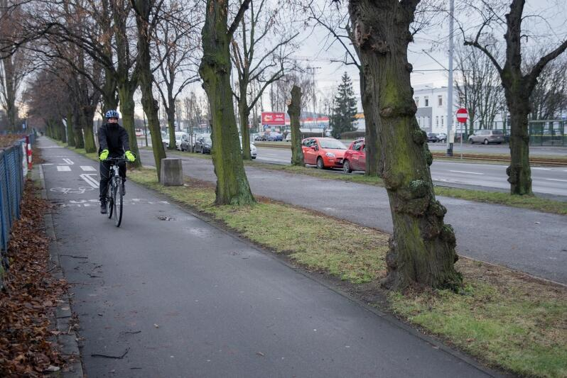 O zmianach w obrębie tego odcinka trasy wzdłuż al. Hallera marzy chyba każdy jeżdżący tędy rowerzysta