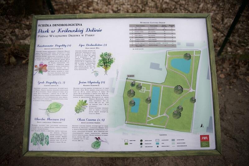 Tablica pokazująca ścieżkę dendrologiczną w Parku Królewskiej Doliny w Gdańsku