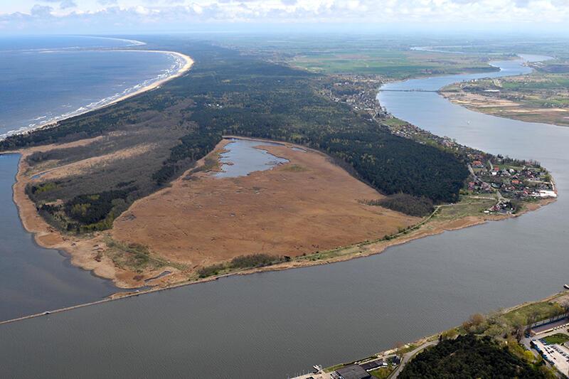 Rezerwaty na Wyspie Sobieszewskiej obfitują w cenne mokradła