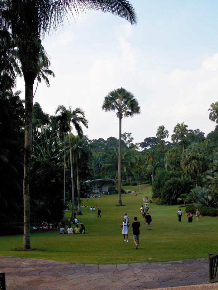 Trawniki wokół sceny koncertowej w singapurskich Ogrodach Botanicznych są jednym z ulubionych miejsc Singapurczyków na weekendowy piknik