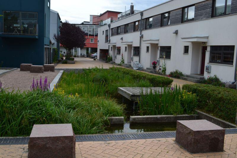 Tak wygląda ogród deszczowy w szwedzkim Malmo. Podobne mogą powstać w Gdańsku