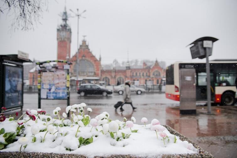 W marcu jak w garncu, czyli powrót zimy do Gdańska. Który to już w tym roku? Tym razem w czwartek, 29 marca
