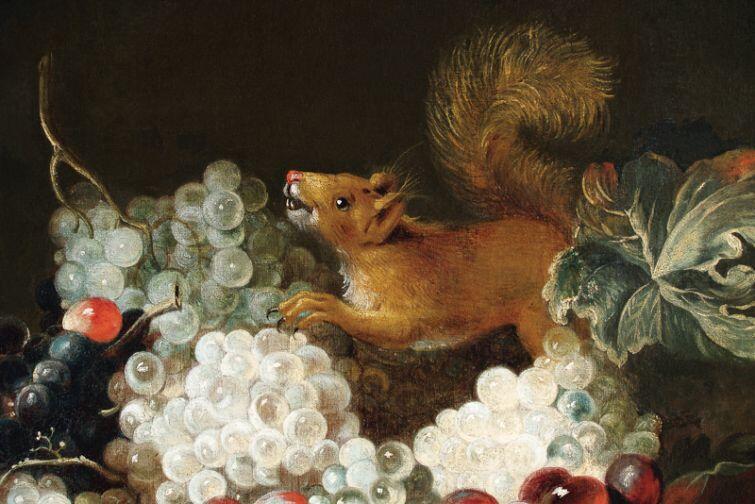 Andreas Stech - Martwa natura z wiewiórką  (1672 r.)