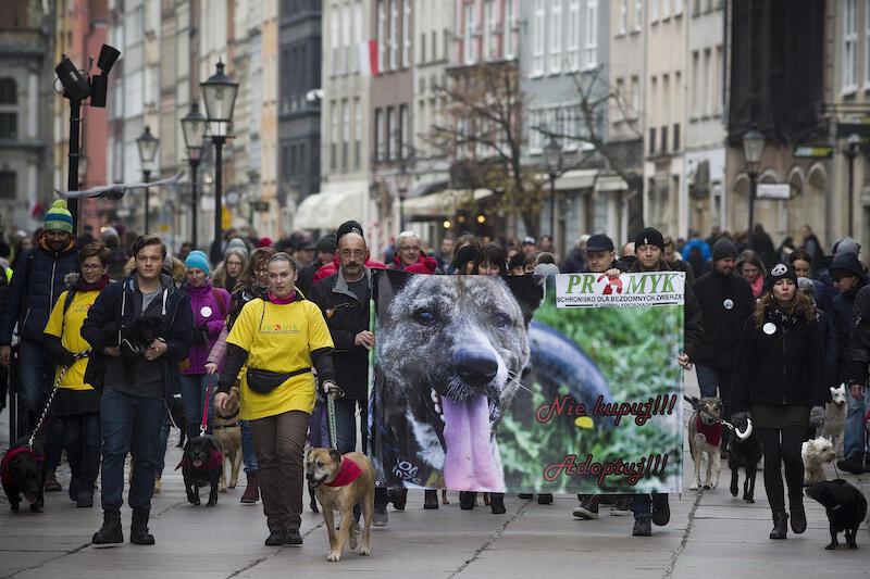 5. jubileuszowa edycja spaceru wyruszy w sobotę 10 listopada o godzinie 12:00 spod Forum Gdańsk