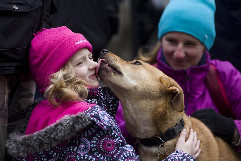 Pies to najcudowniejszy przyjaciel człowieka. Okaż mu miłość, a odwdzięczy się po stokroć