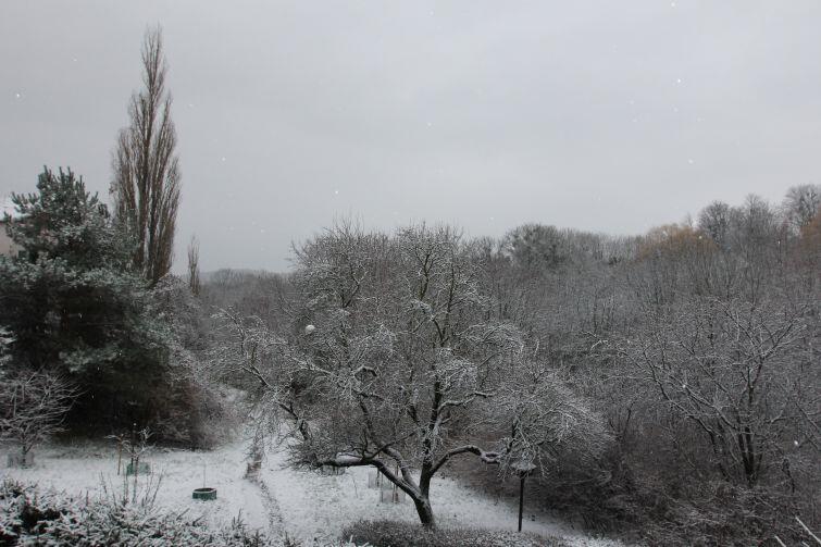 Taki widok z okna zobaczyli rano gdańszczanie