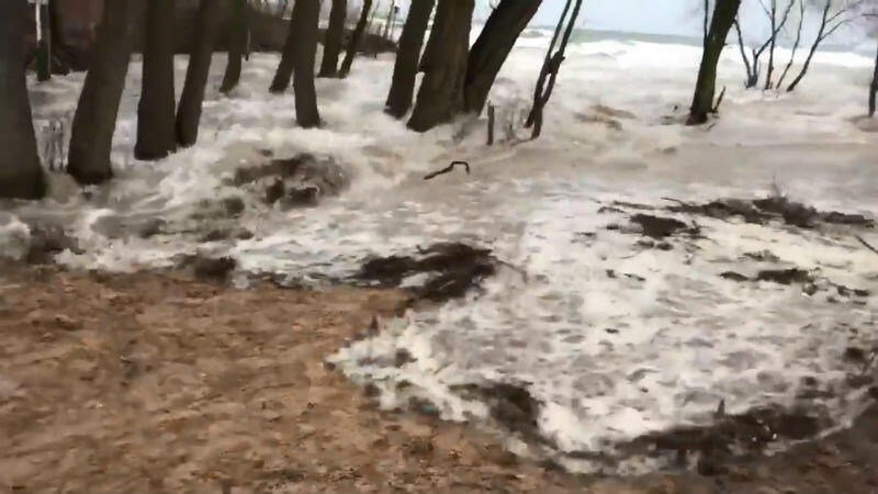 Ujście Potoku Oliwskiego - wiatr wpycha wodę w ląd