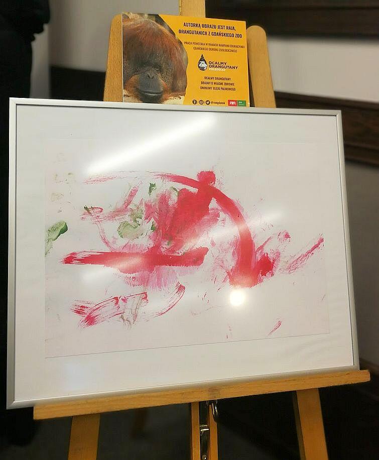 Za jaką kwotę uda się wylicytować obraz namalowany przez orangutanicę Raję?