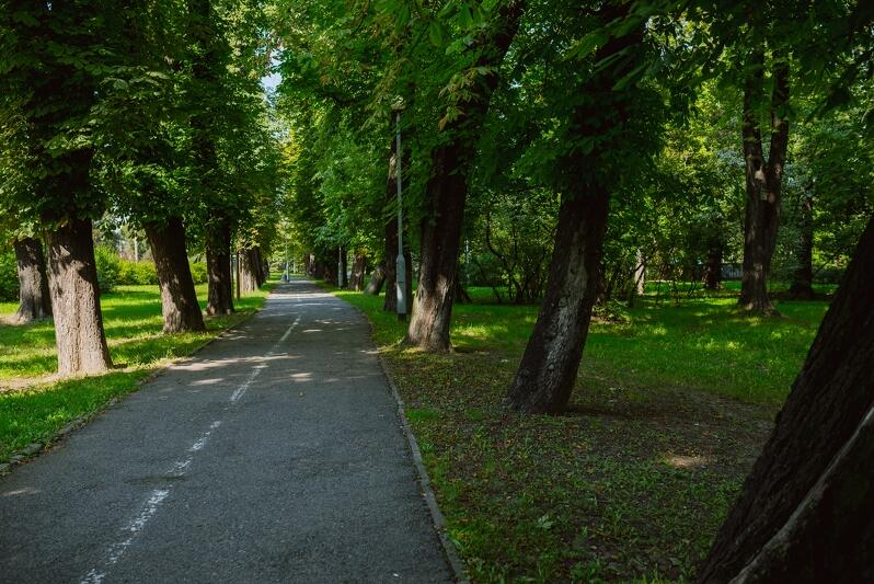 Park Steffensów - jedno z najbardziej urokliwych miejsc w dzielnicy Aniołki