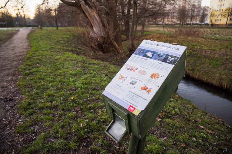 Drewniane zasobniki zwane kaczkomatami, które umieszczono przy zbiornikach wodnych i w parkach, są małymi magazynami zdrowej żywności dla ptaków