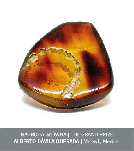 Amber Design Award - praca Alberto Davila Quesada z Meksyku