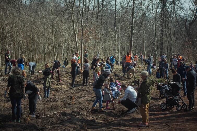GZDiZ akcję Łączy nas las  organizuje już kolejny raz. Cieszy się ona powodzeniem