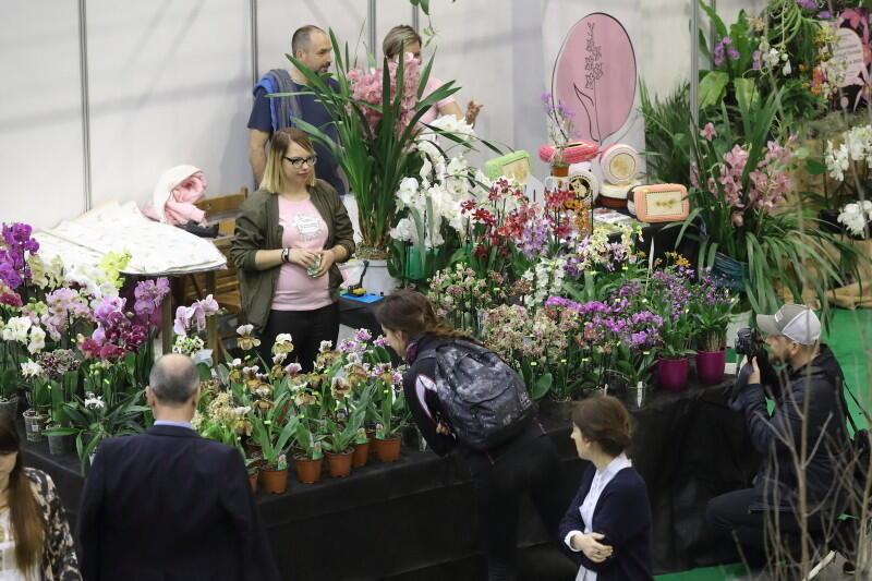 Wśród kilkuset wystawców znajdziemy w tym roku m.in. specjalistów od roślin
