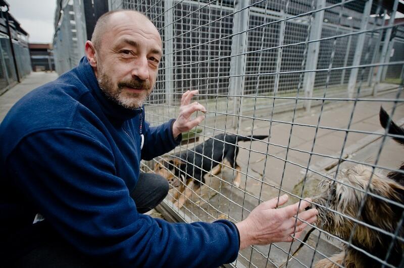 Piotr Świniarski kierownik Schroniska dla bezdomnych zwierząt Promyk w Gdańsku
