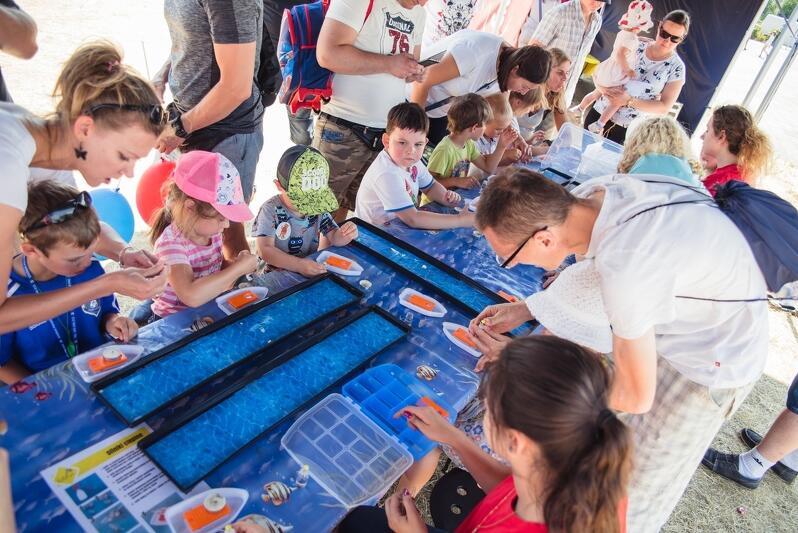 Jak zorganizować w wakacje wolny czas dziecku? Z pomocą przychodzi Miasto