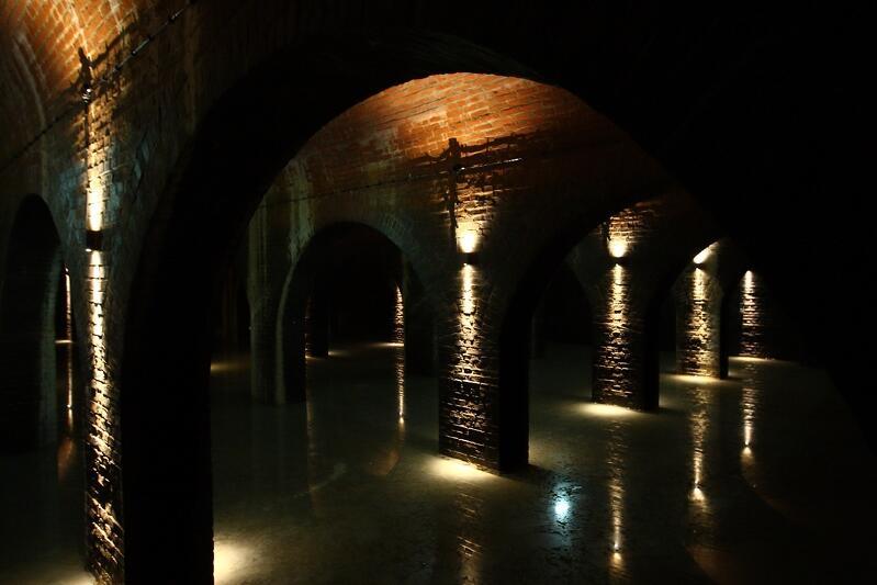 W zbiorniku znajduje się około 0.5 metra wody. Zapewnia to wilgotność powietrza optymalną dla nietoperzy