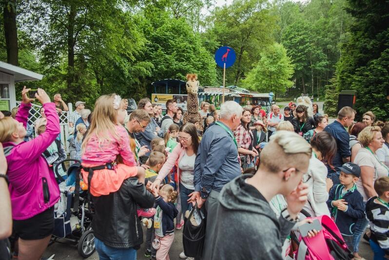 Wieczór marzeń to ogólnoświatowa akcja, w której udział bierze większość polskich ogrodów zoologicznych. W tym Gdańsk
