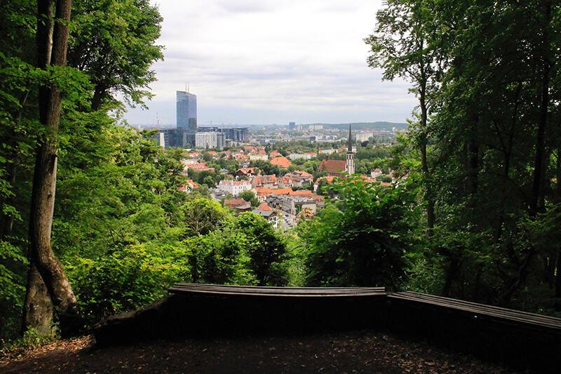 Widok VI znajduje się w Oliwie, na wzgórzu Pachołek