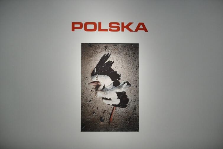 Zdjęcia z cyklu Polska-rzeczywistość  użył Jan Klata na plakacie swojego spektaklu  Wesele