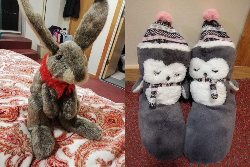 """Po lewej: mój królik imieniem """"Bryce Canyon Butch Cassidy Borkowski"""", który przeprowadził się ze mną do Wielkiej Brytanii, po prawej: wynik jednorazowego poskarżenia się babci, że w akademiku jest zimno"""