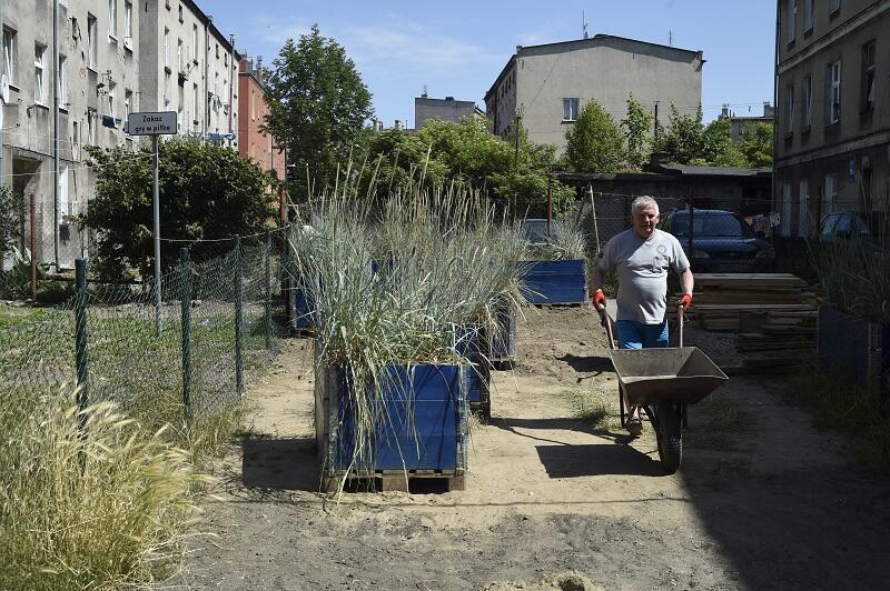 Roślinność nasadzono także w skrzyniach, obok zaplanowanych wcześniej traw, mieszkańcy dosadzają swoje rośliny