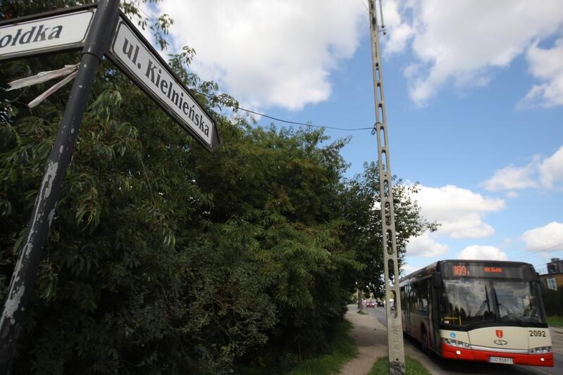 Linia autobusowa 169 z początkiem września będzie miała dłuższą trasę