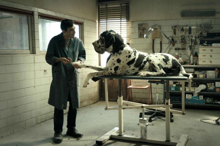 "Kadr z filmu ""Dogman"""