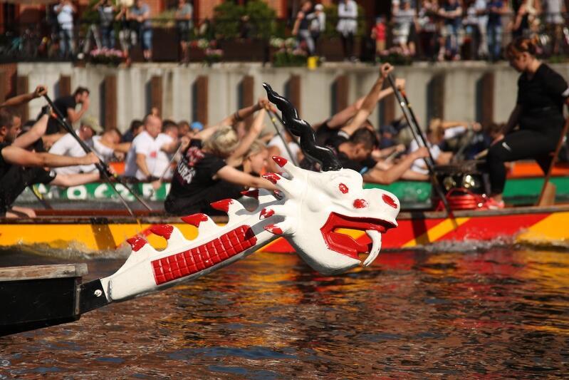 Wyścigi na smoczych łodziach można obserwować m.in. w trakcie letnich imprez na Motławie