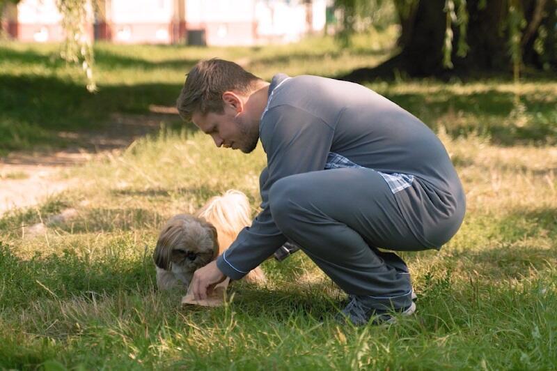 Sprzątanie po psie, to nie jest trudna sprawa