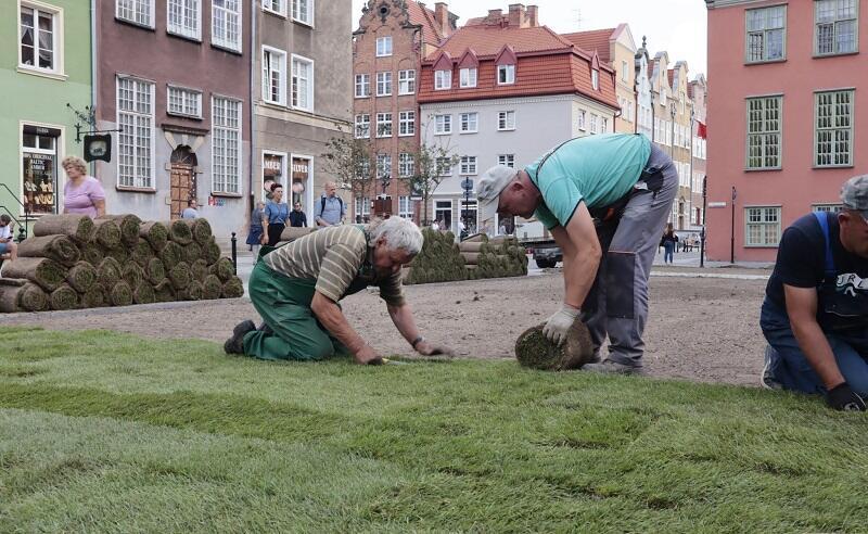 Układanie trawnika z rolki przy ul. Św. Ducha