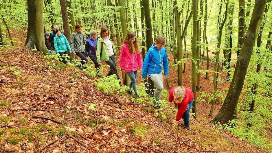 Piesza wędrówka przez tereny leśne odbędzie się na dystansie około 7 km.