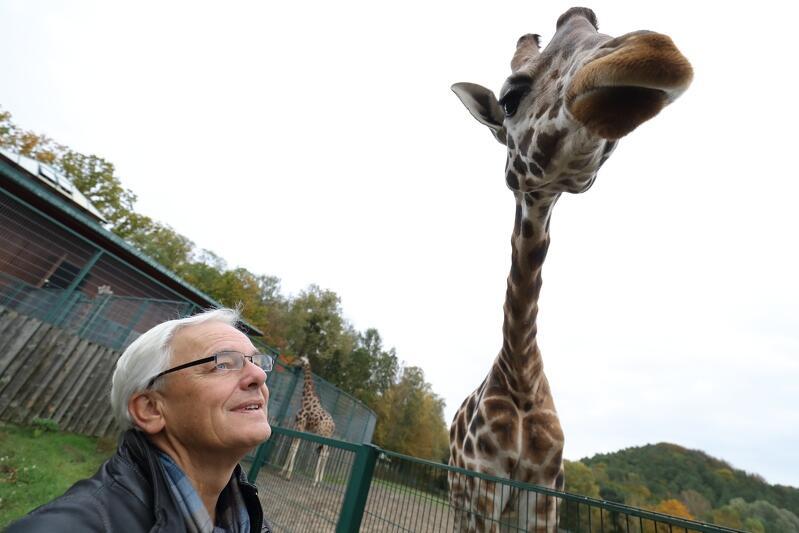 Gościem najbliższego programu Wszystkie Strony Miasta będzie Michał Targowski - dyrektor gdańskiego ZOO, który opowie nie tylko o darmowym weekendzie, ale też o nowych mieszkańcach ogrodu. Jednym z nich jest uroczy samiec żyrafy Rothschilda o imieniu Gem
