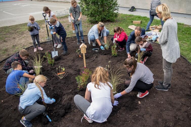 Nietypowy przyszkolny ogród założyli uczniowie SP 76, przy wsparciu wiceprezydenta Gdańska i szefowej miejskich radnych