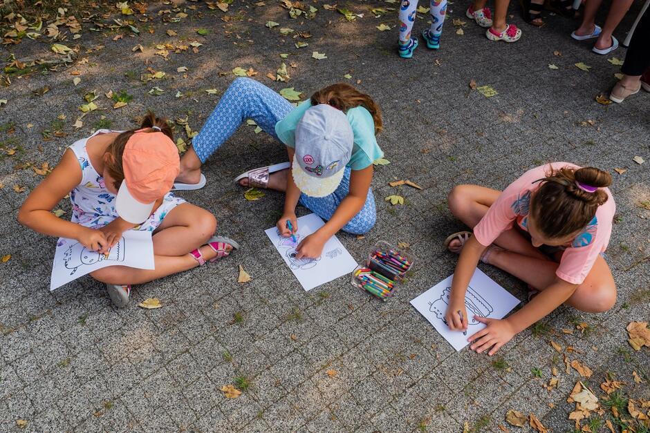 Zajęcia matematyczne adresowane są do dzieci w przedziale wiekowym klas 3 - 6 szkoły podstawowej starszej części Chełmu w ramach projektu rewitalizacyjnego.