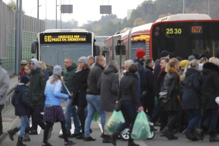 Zdecydowana większość mieszkańców dotarła dziś na groby pojazdami komunikacji miejskiej