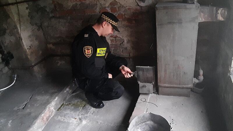 Strażnik pobierający próbkę popiołu z przydomowego kotła cieplnego